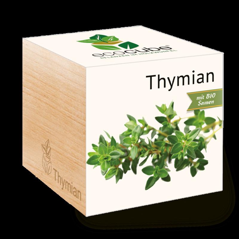 Ecocube thymian 73f1db76